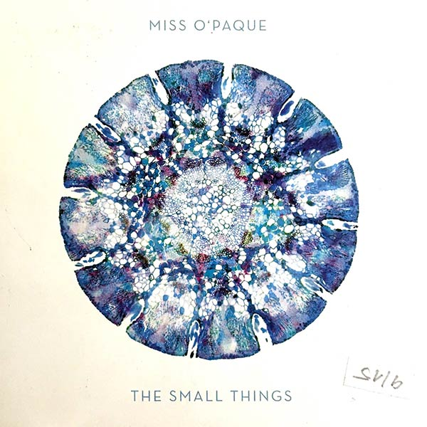 MISS O'PAQUE : The small things